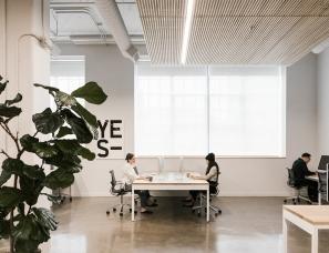 Casework--Work & Co办公室